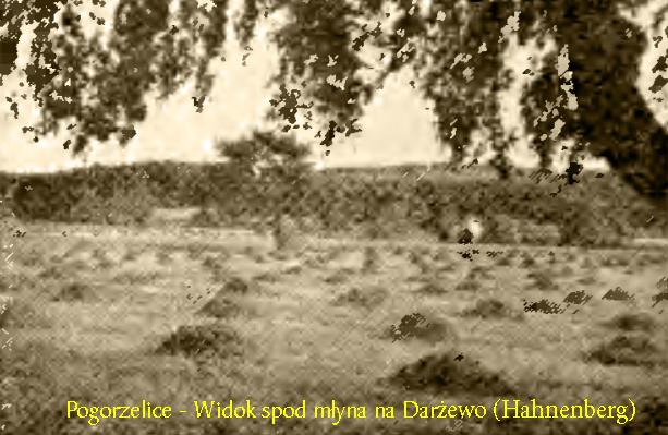 Langebose - Widok na Darżewo
