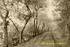 Langebose - Droga za młynem